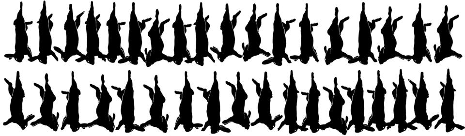 34 lapins